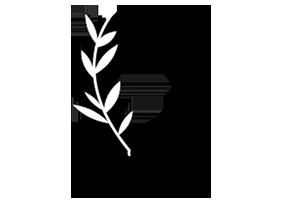cecily skincare logo 2x